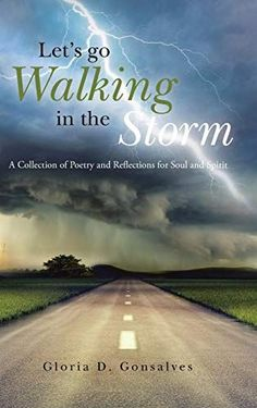 #Book Review of #LetsGoWalkingintheStorm from #ReadersFavorite Reviewed by Asher Syed for Readers' Favorite