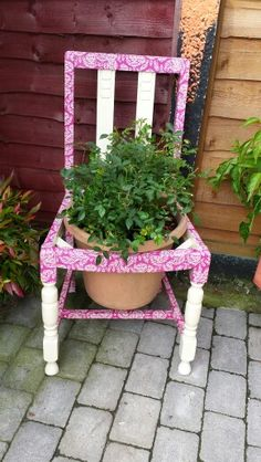 My upcycled chair with a plant in it