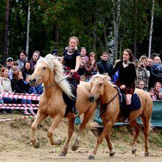 Вчера было НЕВЕРОЯТНО КРУТО!!!!! Кто был делитесь впечатлениями?!😱😻👌🏼👍🏻#лошади #верховаяезда #дети #отдых #лошадинаяжизнь #конюшня #Токсово #лошадикаждыйдень #любовь #лошадивТоксово #конюшняЮленька #лошадиСпб #Спб #horseSpb #horse #horses #riding #equestrian #equine  #horselove #children #horseofinstagram #horseoftheday #horselife #relax #horseontoksovo