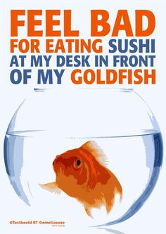"Quote ""Feel bad for eating sushi at my desk in front of my goldfish"" Sushi Quotes, Chinese Proverbs, Goldfish, Laugh Out Loud, Funny Quotes, Lol, Feelings, My Love, Desk"