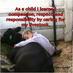 Growing up on a ranch taught me a set of values that you can't learn in the city. It was waking up early for school to feed show animals and putting the health and safety of the animals before my own wants or needs. Country Quotes, Country Life, Country Girls, Cow Quotes, Horse Quotes, Fair Quotes, Livestock Judging, Showing Livestock, Phrase Cute