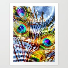 Pavo Feathers Under Water - $24.88