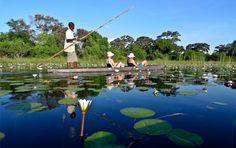 6-night Okavango Delta Budget Safari