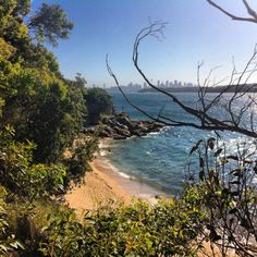 Watson's Bay #NSW #Sydney #Australia