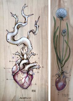 Fay Helfer | Clover Heart pyrography, natural pigment and pastel on wood