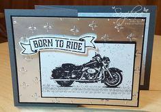 One Wild Ride, Men, Stampin 'Up !, scraphexe.de