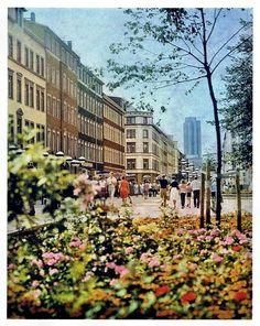 Brühl, 1981