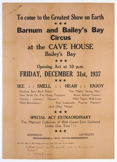 Barnum and Bailey's Bay Circus Advertisement. Complete with Wild Lions and Wild Bermudians!