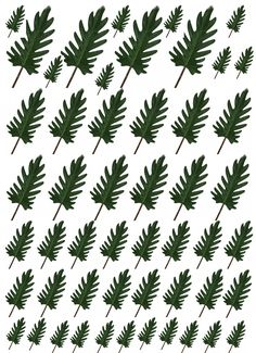 Imprimibles-plantas 1:12 » Mis Pequeños Sueños