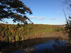 Clark Reservation State Park in Jamesville, NY