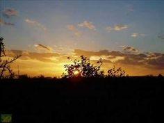 Čechomor (Slunéčko) Celestial, Sunset, Ale, Youtube, Outdoor, Musik, Outdoors, Ale Beer, Sunsets
