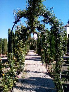 General life garden