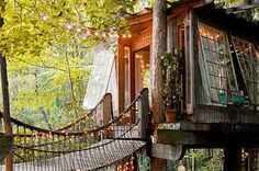 12 Treehouses You Need To Sleep In Before You Die