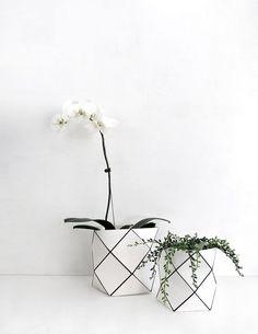 Preto e branco na decoração com flores e plantas.