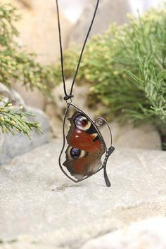 Butterfly wings necklace real Butterfly brown wings gift