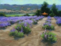 Lavender at Matanza's by Kim Lordier Pastel ~ 12 x 16