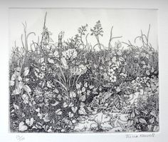 Spring (2006) Etching / Engraving by Tricia Newell | Artfinder