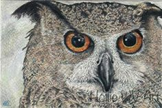 Blank owl birthday greetings card of Solomon the Eagle Owl This is a blank inside for your message and printed on size, printed smooth white card taken from the original colour pencil painting. Solomon is also currently available as a fine art print. Colored Pencil Artwork, Pencil Painting, Color Pencil Art, Colored Pencils, In Law Christmas Gifts, Stationary Gifts, Owl Bird, Pencil Illustration, Birthday Greeting Cards