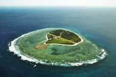 On approach and departure, the pilot will circle Lady Elliot Island Eco Resort located within the Great Barrier Reef Marine Park, a couple of times in each direction, so you'll be able to get a fantastic aerial view - Al Mackinnon at Matador Network