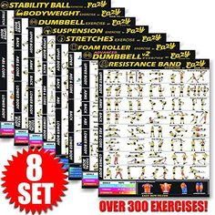"Amazon.com : DUMBBELL EXERCISE POSTER LAMINATED - Workout Strength Training Chart - Build Muscle, Tone & Tighten - Home Gym Weight Lifting Routine - Body Building Guide w/ Free Weights & Resistance - 20""x30"" : Sports & Outdoors"