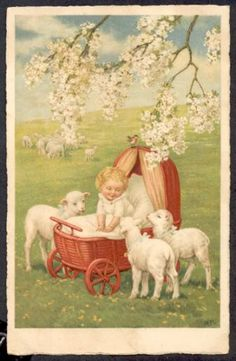 baby in spring with lambs