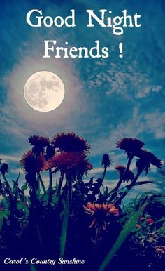 Good Night Friends Pictures, Photos, and Images for Facebook, Tumblr, Pinterest, and Twitter