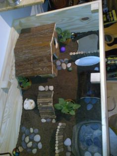 Show Your Pictures Of Your Hermann Tortoise Enclosures...? - Reptile Forums