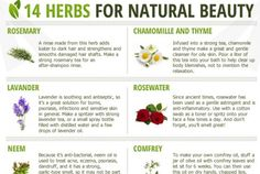 superherbalfoods. herbs for natural beauty
