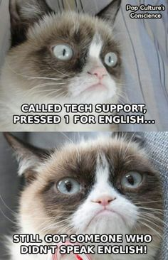 Grumpy Cat . . . (legitimately grumpy this time!)