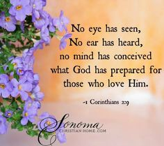 CORINTHIANS 2:9 - No eye has seen, No ear has heard, no mind has conceived what God has prepared for those who love Him.