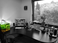 Macbook Air desktop set up with an iPad and an aquarium and a plant AND a view! If I worked here, I would be so inspired all the time!