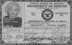 Mrs. Dimaggio in '54