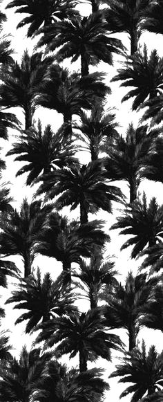 Vegetal Pattern Wallpapering. This would look fantastic in a powder room or an accent wall in a sunroom.