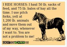 You are not a problem....however I don't yell at the horses :) I get them to obey by training them and trying to think like they do
