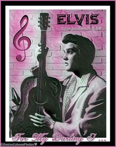 ELVIS 'For My Darling I Love You' 💝