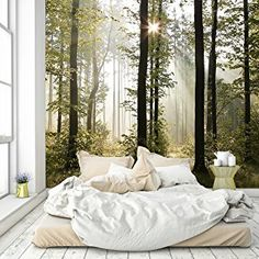 murimage Photo Wallpaper Forest 274 x 254 cm Wall Mural optic Wood Beech Trees Sunlight Nature livingroom including paste 3d Wallpaper For Walls, Photo Wallpaper, Forest Wallpaper, Living Room Bedroom, Home Decor Bedroom, Tree Wall Murals, Mural Art, Cabins And Cottages, Modern Wall Decor