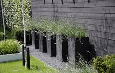 Black Fence With Black Planters Modern Landscaping, Outdoor Landscaping, Outdoor Plants, Front Yard Landscaping, Outdoor Gardens, Lawn And Landscape, Landscape Design, Garden Design, Townhouse Garden