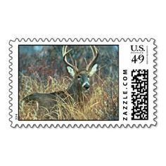 White-tailed Deer Stamps online after you search a lot for where to buyDeals          	White-tailed Deer Stamps lowest price Fast Shipping and save your money Now!!...