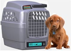 A climate controlled dog carrier!?