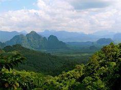 Khao Sok national park travel guide and information about the Khao Sok National Park accommodation, Khao Sok lake, Khao Sok tours, Khao Sok widlife, trekking #KhaoSokNationalPark #KhaoLakExplorer