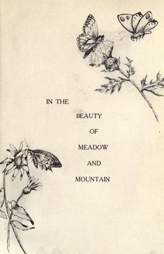 In the beauty of meadow and mountain