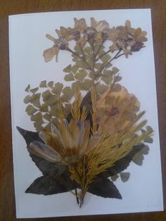 I made this card with flowers from my nanas garden, she went to Heaven over 6 years ago, my husband, children and I lived in her home for 4 years after she passed, during that time I pressed these and forgot about them, at least 2 years later I found them in the press, timely as the garden has since been pulled up and the house is on the market.  I made this card for my dad (nana's son), his birthday is coming up :)