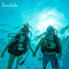 Experience enchanting sealife sites at #SandalsWhitehouse
