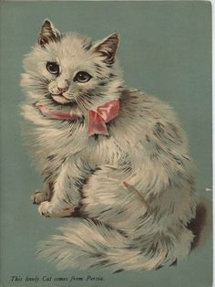 """Old children's book """"Puss and Her Playmates"""" Raphael Tuck & Sons.  interior illustration of white cat with pink ribbon entitled """"This lovely cat comes from Persia""""  Persian Cat."""