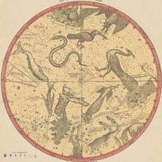 https://flic.kr/p/a45gMR | The Constellations for Each Month of the Year - Atlas of the Heavens, Elijah Burritt 1856 | Burritt, Elijah H. Atlas designed to illustrate Burritt's Geography of the heavens. New York : Mason Bros., 1856.