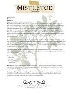 Herbarium: Magical and Medicinal Uses of Mistletoe Magic Herbs, Herbal Magic, Healing Herbs, Medicinal Herbs, Witch Herbs, Hedge Witch, Magick, Wiccan, Witchcraft Herbs