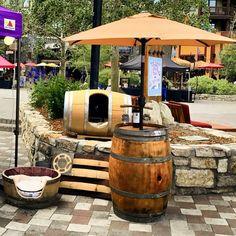Wine Barrel Table, Wine Barrel Furniture, Wine Barrels, Outdoor Furniture, Tiki Umbrella, Umbrella Stands, Outdoor Tables, Outdoor Patios, Backyard Patio