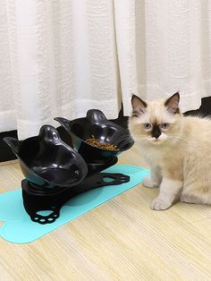 I found this amazing Eco-friendly Orthopedic Cat Bowl Cat Neck Protect Non-slip Bowl Adjustable Neck Protection Pet Bowl Tilt Bowl with US$15.99,and 14 days return or refund guarantee protect to us. --Newchic Cat Bowl, Pet Feeder, Make Money Now, New Friends, Clothes For Sale, Pet Care, Pet Supplies, Cat Cat, Eco Friendly