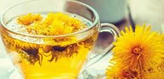 3 Effective Benefits Of Dandelion Tea For Weight Loss Dandelion Benefits, Dandelion Root Tea, Dandelion Leaves, Dandelions, Weight Loss Drinks, Healthy Weight Loss, Green Tea Diet, Beta Carotene, Alternative Medicine