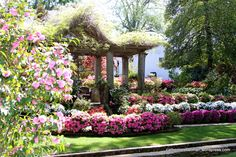 A Garden Along the Azalea Trail in Tyler, Texas. Every spring, Tyler, Texas, bursts into bloom. Like floral fireworks. Everywhere you look are gorgeous flowering shrubs and trees.